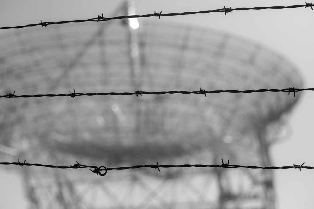 Stanford Dish - Black And White Barbed Wire